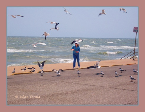 Sheila on Seawall Feeding Sea Gulls