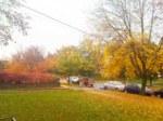 Autumn Leaves Topper Full Size