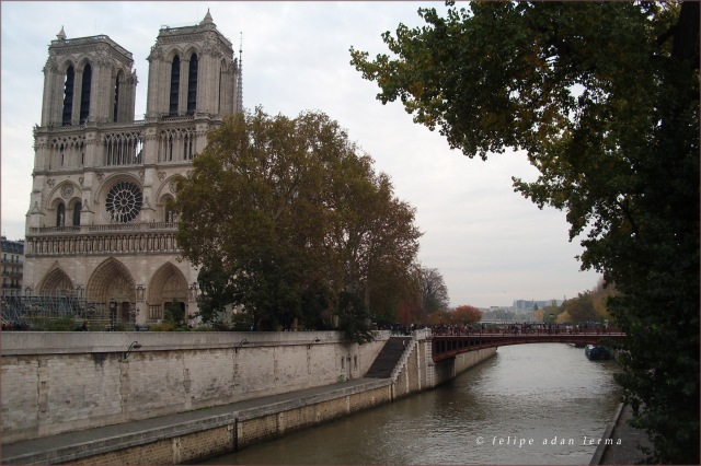 Notre Dame Quai Full Size Image - © Felipe Adan Lerma
