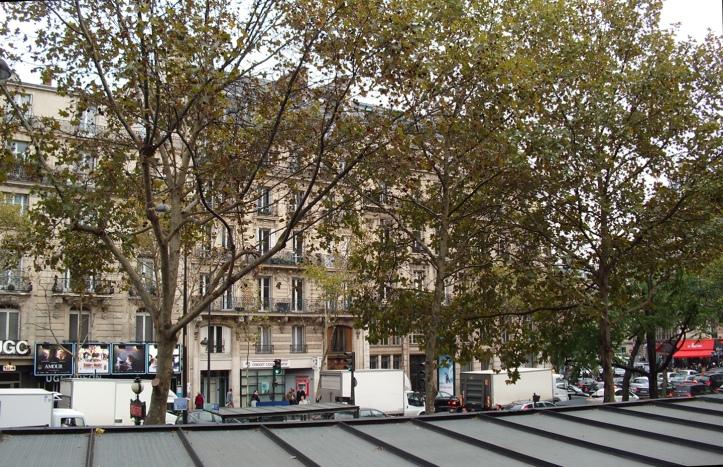 Another View from Starbucks, Paris, Blvd St Germain - © Felipe Adan Lerma