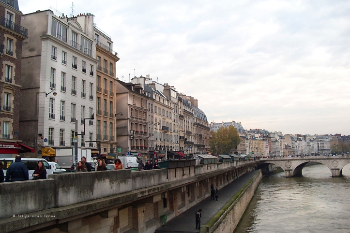View of Left Bank Buildings from Pont Saint-Michel