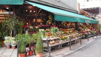 Flower Shop Rue Saint-Andre des Arts