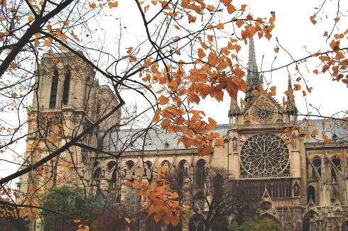 View of Notre Dame through Late Fall Foliage