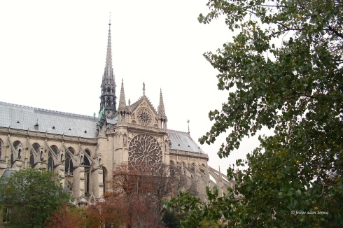 Notre Dame Side with Foliage