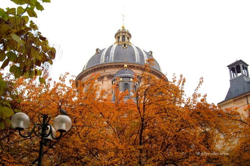 Fall Foliage & Dome, Paris