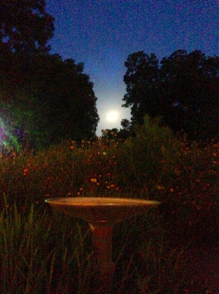 Super Moon 2013, Springdale Farm, Austin Texas