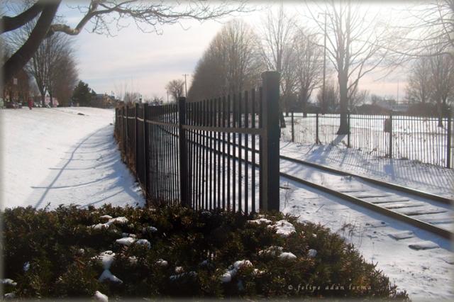 Fench Tracks Snow © Felipe Adan Lerma