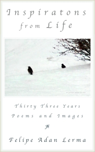 Inspirations from Life - Thirty Three Years of Poems and Images
