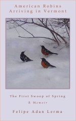 In-Progress : American Robins Arriving in Vermont