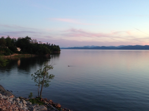 swimmers in lake champlain 2015 full
