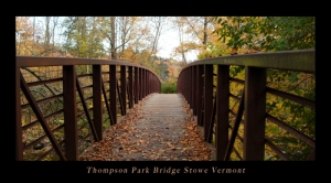 Thompson Park Bridge Stowe Vermont DSCI4813 Poster twitter