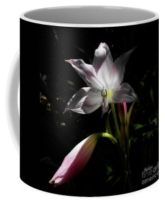 Coffee Cup - Lovely Lilies Partners - Original image Felipe Adan Lerma * all rights reserved