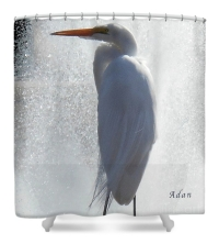 Birds And Fun At Butler Park Austin - Birds 2 Macro Shower Curtain