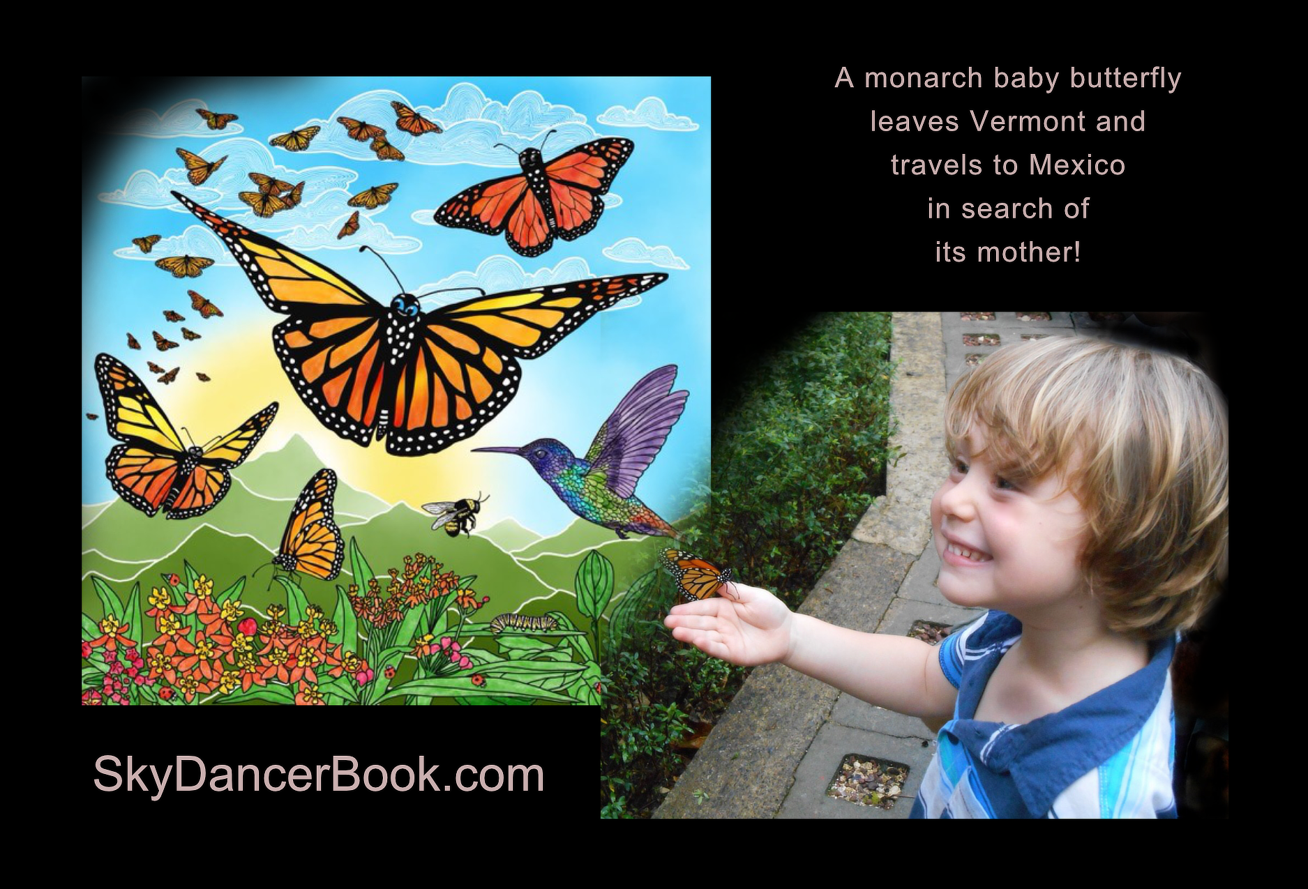 SkyDancerBook, a children's illustrated book about the Monarch butterfly migrations by Tania DeGregorio on Amazon.com