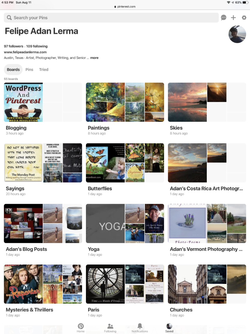 https://www.pinterest.com/felipeadanlerma/ No sense hiding it, I'm a beginner 😊  - screen shot of my Pinterest Boards page 081119 .