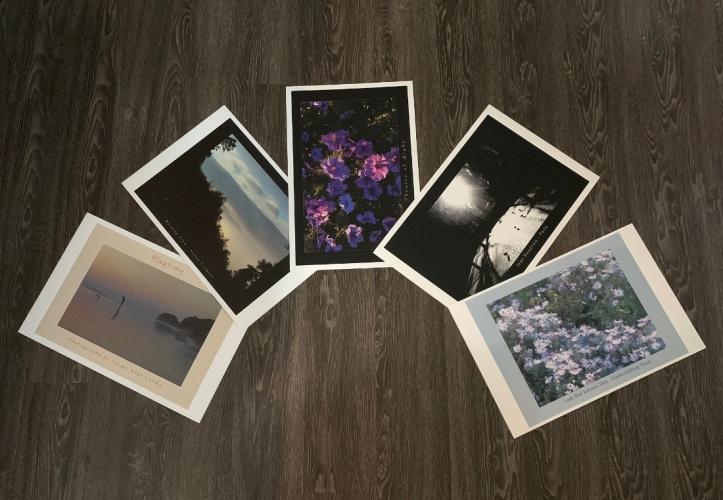 5 new posters - Designs & images © Felipe Adan Lerma, printed on heavy 12x18 stock - www.felipeadanlerma.com