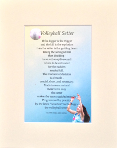 volleyball setter with mat