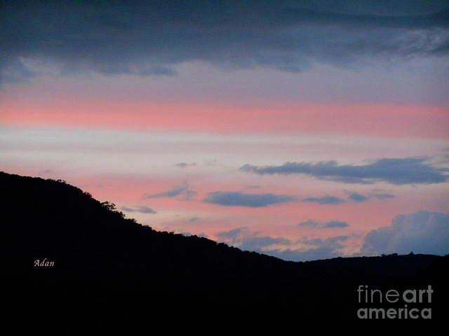 Texas Hill Country Salute From The Fig Preserve ©Felipe Adan Lerma https://fineartamerica.com/featured/texas-hill-country-salute-from-the-fig-preserve-felipe-adan-lerma.html
