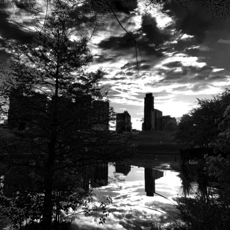After a Spring Rain Austin Sunrise Skyline From Butler Park BW ©Felipe Adan Lerma https://felipeadan-lerma.pixels.com/featured/after-a-spring-rain-austin-sunrise-skyline-from-butler-park-blackwhite-felipe-adan-lerma.html
