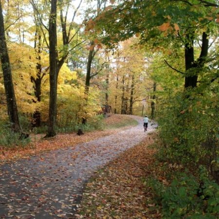 Autumn Bicycling ©Felipe Adan Lerma https://fineartamerica.com/featured/autumn-bicycling-felipe-adan-lerma.html