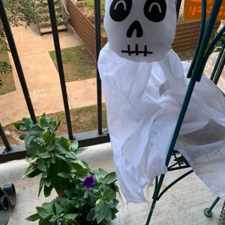 Mid-October Halloween Guest ©Felipe Adan Lerma https://fineartamerica.com/featured/mid-october-halloween-guest-felipe-adan-lerma.html?newartwork=true