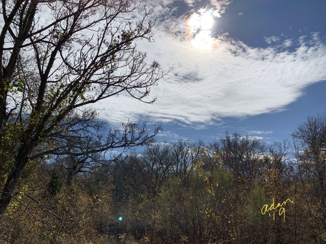 Mid-day Autumn Walk South Austin Nov 25'19