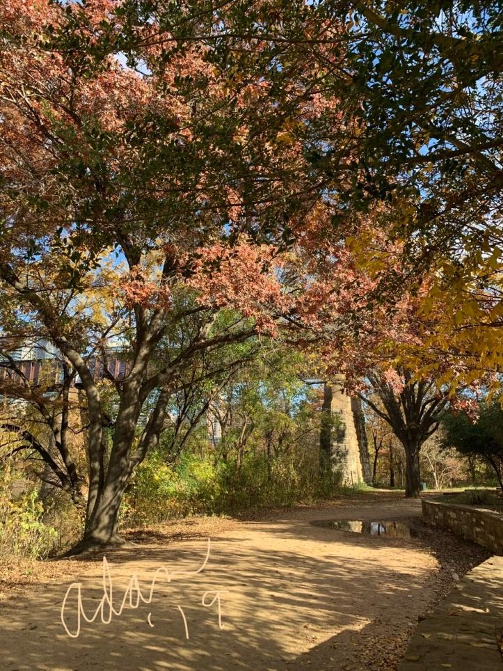Afternoon Autumn Walk Railroad Trestle at Lady Bird Lake Nov 25'19 ©Felipe Adan Lerma