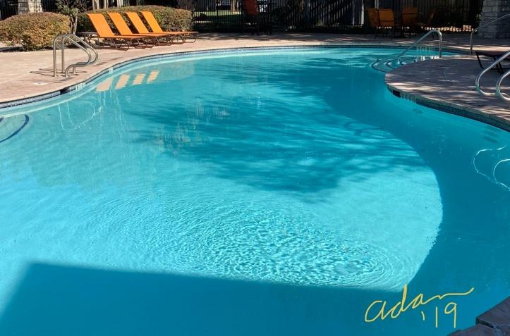 November Sunshine on the Pool ©Felipe Adan Lerma