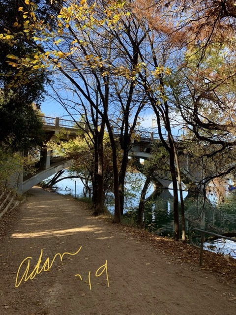 Afternoon Autumn Walk Lady Bird Lake Nov 25'19