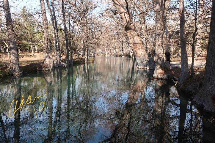 Blue Hole Park Wimberley Texas, Creek View 12.20.20 ©Felipe Adan Lerma