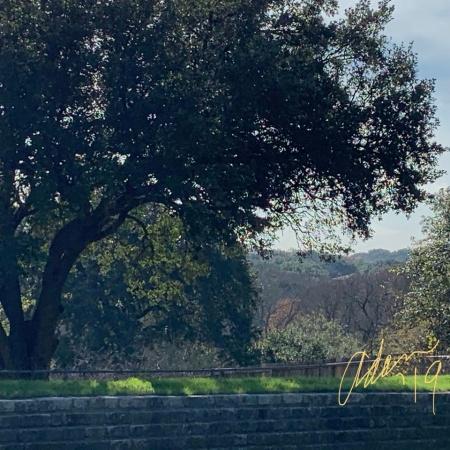 Walking in South Austin 12.05.19 pm ©Felipe Adan Lerma