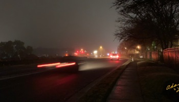 Foggy Night Cars 01.13.20 ©Felipe Adan Lerma