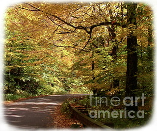 Mountain Road Stowe Vt Detail 2 ©Felipe Adan Lerma https://fineartamerica.com/featured/mountain-road-stowe-vt-detail-2-felipe-adan-lerma.html