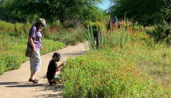 Max & Sheila At Lady Bird WildFlower Center Austin May 18, 2020 ©Felipe Adan Lerma