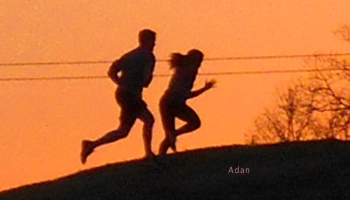 Runners cresting the hill © Felipe Adan Lerma - https://fineartamerica.com/featured/birds-and-fun-at-butler-park-austin-jogging-sunset-run-felipe-adan-lerma.html