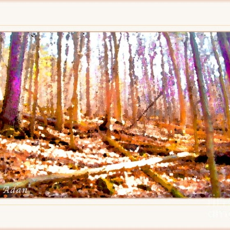 Light Between the Trees ©Felipe Adan Lerma Original Digital Art https://felipeadan-lerma.pixels.com/featured/light-between-the-trees-felipe-adan-lerma.html