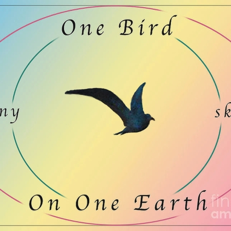 One Bird Many Skins ©Felipe Adan Lerma https://fineartamerica.com/featured/one-bird-poster-and-greeting-card-v2-felipe-adan-lerma.html