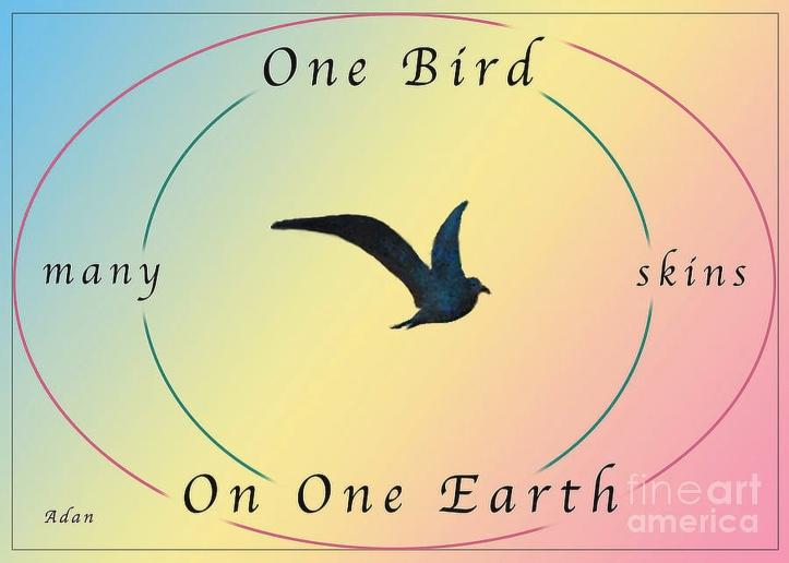 One Bird Many Skins ©Felipe Adan Lerma https://fineartamerica.com/featured/one-bird-poster-and-greeting-card-v2-felipe-adan-lerma.html
