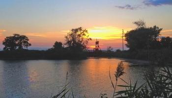 Sunset West of Myers Bagels ©Felipe Adan Lerma https://fineartamerica.com/featured/sunset-west-of-myers-bagels-felipe-adan-lerma.html