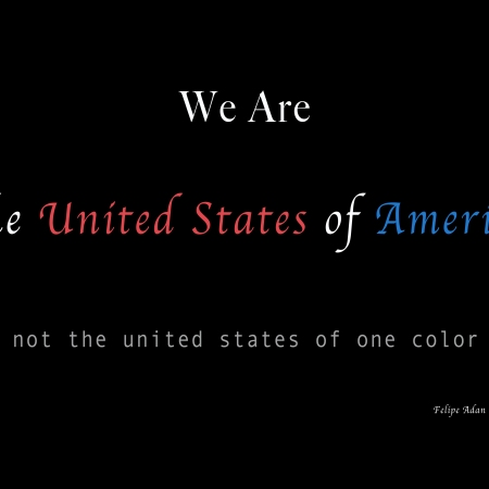 We Are the United States of America not the United States of one color ©Felipe Adan Lerma https://felipeadan-lerma.pixels.com/featured/we-are-the-united-states-of-america-felipe-adan-lerma.html