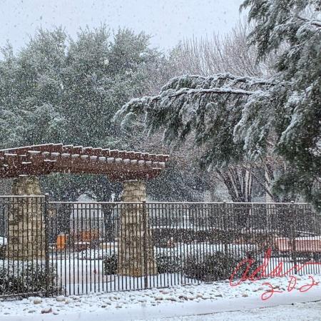 Snow! ©Felipe Adan Lerma 01.10.21 Austin