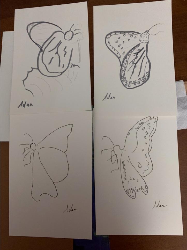 Butterfly Pen and Inks in-progress 01.21.21 ©Felipe Adan Lerma