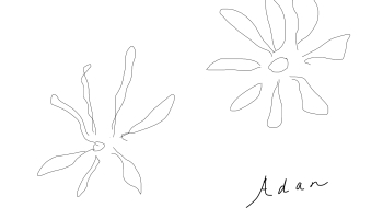 Adan's flowers digital pen and ink ©Felipe Adan Lerma 01.26.21