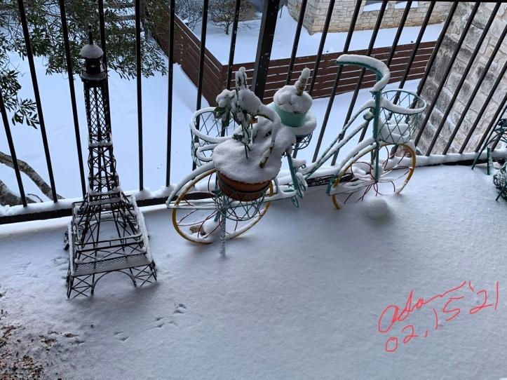 Winter Scene Austin 02.15.21 ©Felipe Adan Lerma