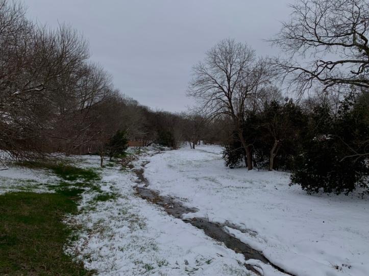 Austin winter storm pictures 02.16.21 ©Felipe Adan Lerma