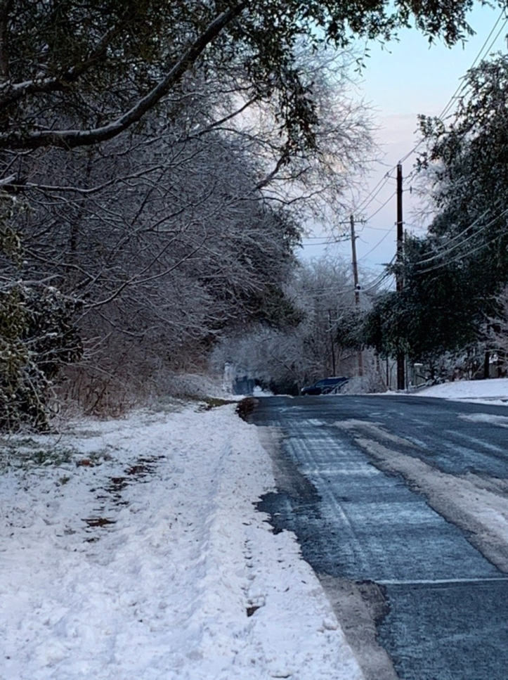 Austin Freeze Feb 2021 ©Felipe Adan Lerma