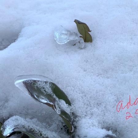 The Light in the Cold Austin Winter Storm Feb 2021 ©Felipe Adan Lerma