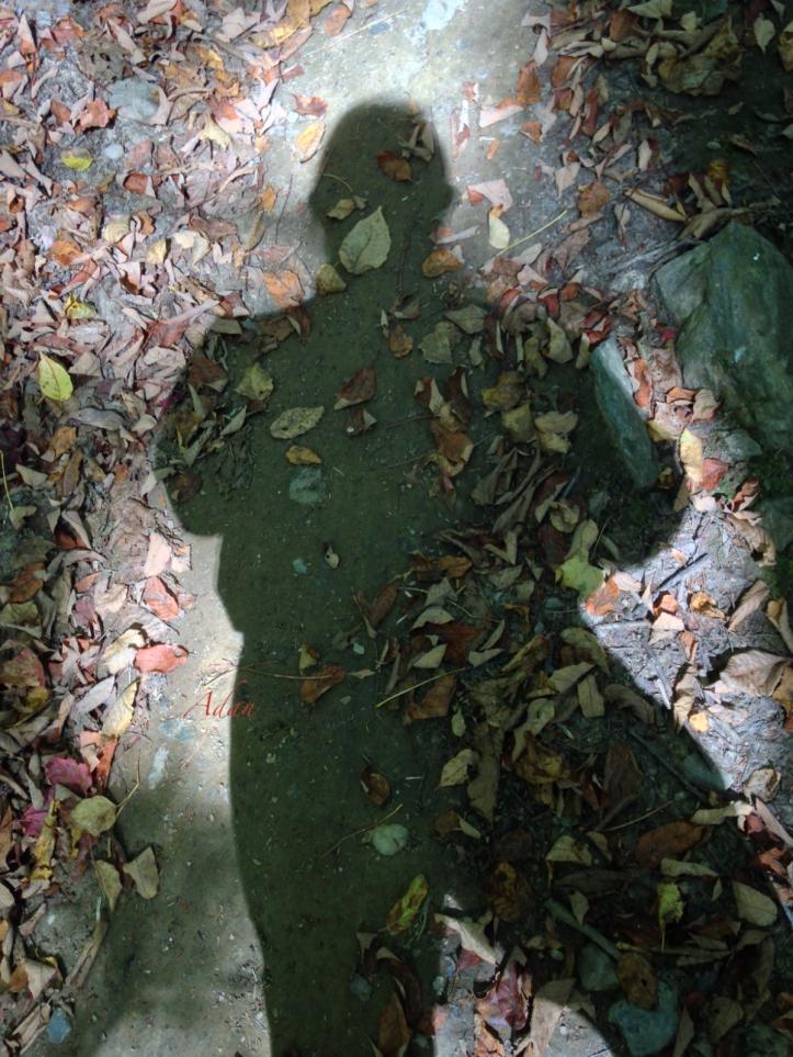 Self Portrait 17 - Shadow Selfie ©Felipe Adan Lerma https://felipeadan-lerma.pixels.com/featured/self-portrait-17-shadow-selfie-felipe-adan-lerma.html