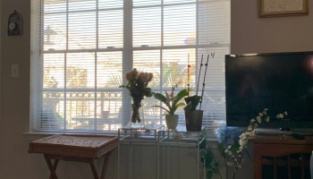 Tuesday March 02, 2021 ©Felipe Adan Lerma - comfortable at home 😊