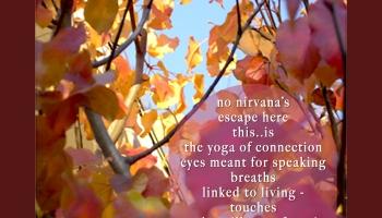 A Yoga Teacher (a beginner's view) ©Felipe Adan Lerma A Yoga Teacher, Gift Writing ©Felipe Adan Lerma https://felipeadan-lerma.pixels.com/art/yoga+teacher